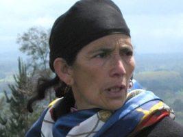 Indígena mapuche de Chile