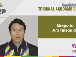 Presidente del Tribunal Agroambiental