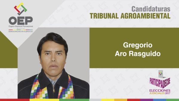Eligen a Gregorio Aro como presidente del Tribunal Agroambiental