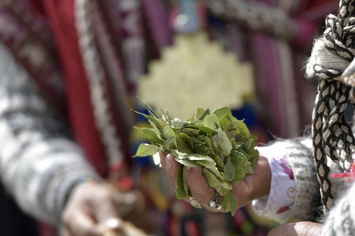 Organizaciones de Tarija celebran el 'Día Nacional del Acullico'