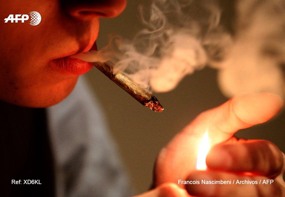 Ministro mexicano propone legalizar la marihuana en zonas turísticas