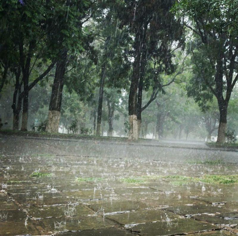 Senamhi prevé un fin de semana con tormentas eléctricas y probabilidades de granizo en Tarija