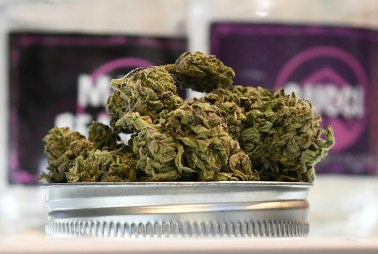 Vermont se convirtió en el noveno estado de Estados Unidos que legaliza la marihuana