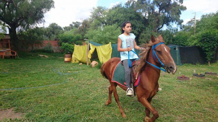 Equinoterapia, tratamientos para niños y adolescentes en Tarija para mejorar habilidades emocionales y físicas