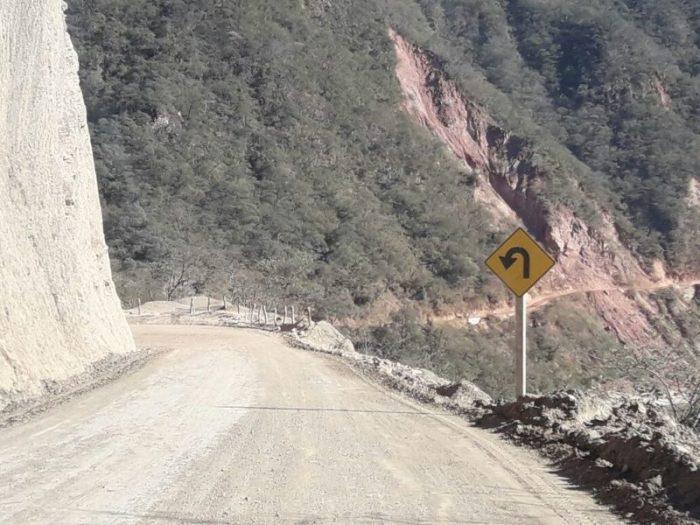 Motociclista muere tras chocar con una vaca en la ruta a Villa Montes