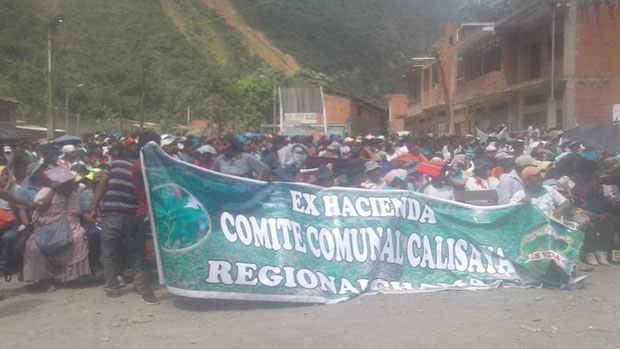 Yungas: Cocaleros de Chamaca deciden no permitir casas de campaña del MAS