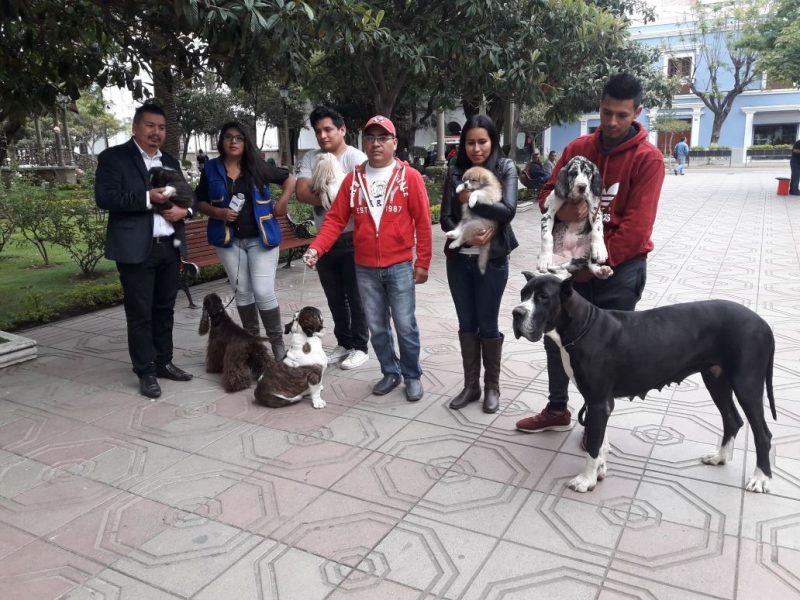 Kennel Club Bolivia lanza el circuito internacional Canino Guadalquivir en Tarija
