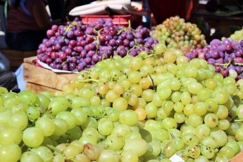 Viticultores de El Valle esperanzados con intensiones de exportación de uva tarijeña al Paraguay