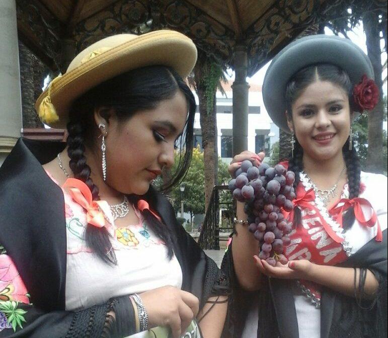 La XII Feria Rotativa de la Uva en Calamuchita, antesala de la fiesta de la Vendimia