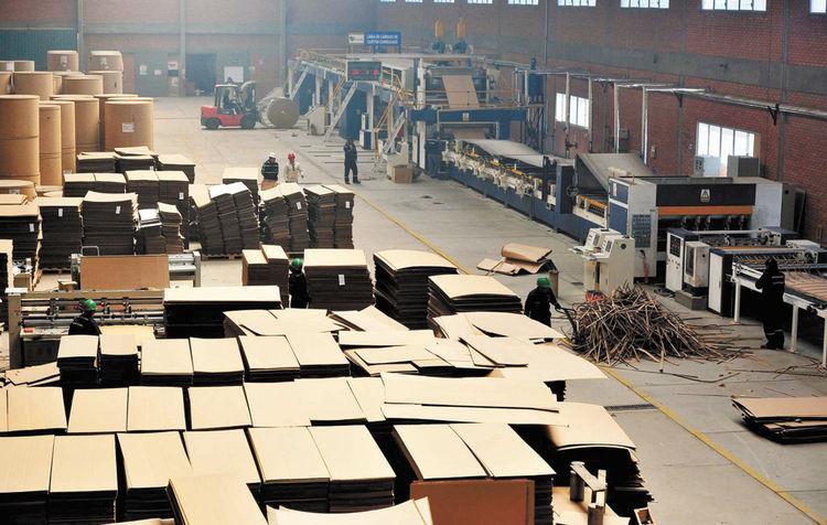 Sedem prevé utilidades de Bs 700 mil en Cartonbol este año