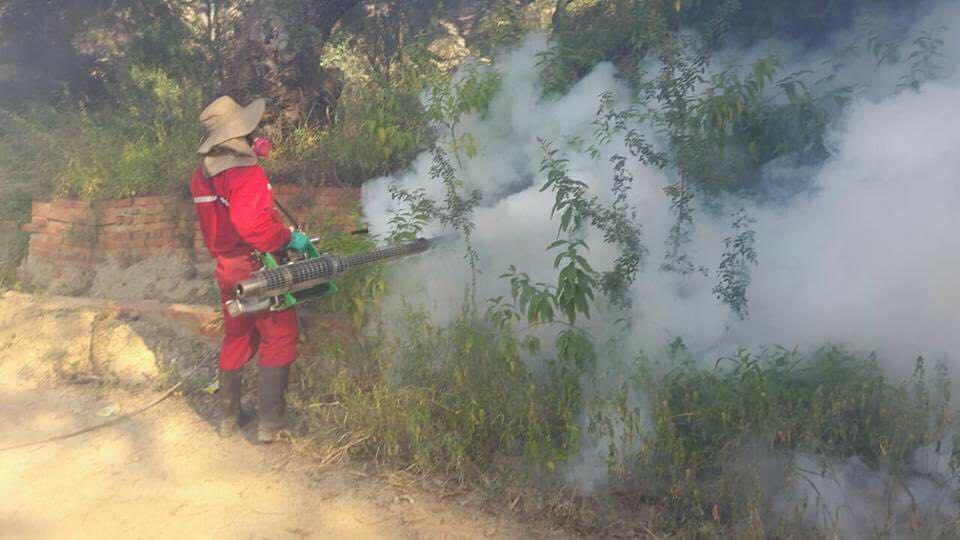 Fumigan barrio San Luis en Tarija para evitar proliferación de vectores