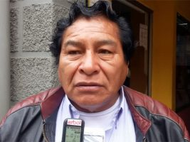 Viceministro de Descolonización