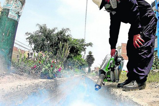 Época de lluvia en Bolivia: riesgo de dengue, mayor prevención