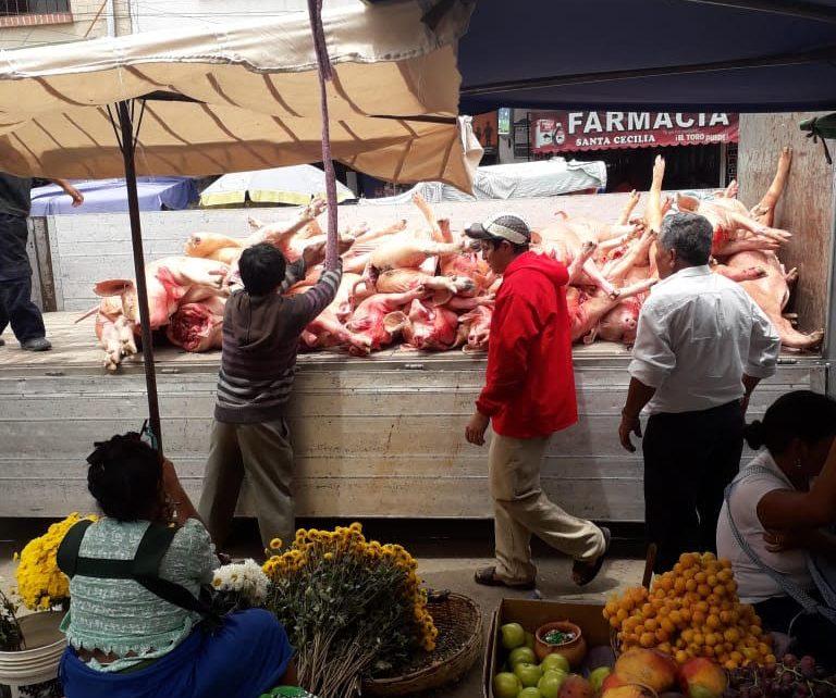 Crama investiga fotografía presentada por la Alcaldía de Tarija y anuncia