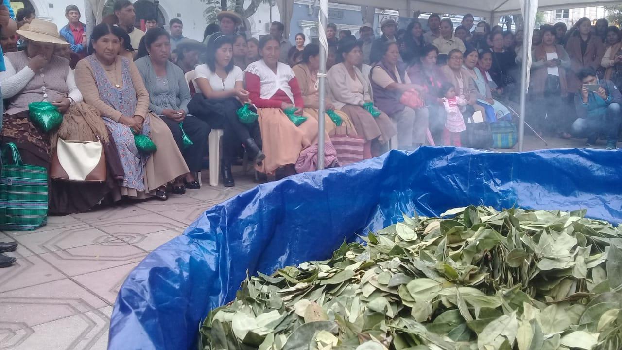 Rinden homenaje al Día Nacional del Acullico en Tarija y regalan hojas de coca a la población