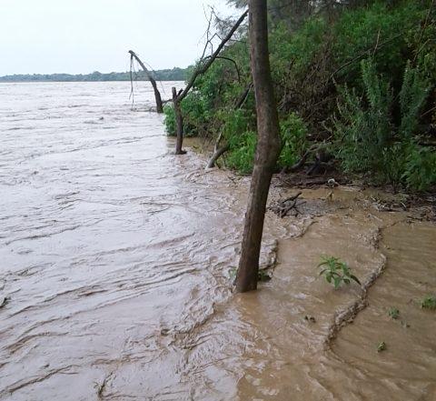 Senamhi de Tarija prevé el desborde del río Pilcomayo y solicita la evacuación de casi 10 comunidades