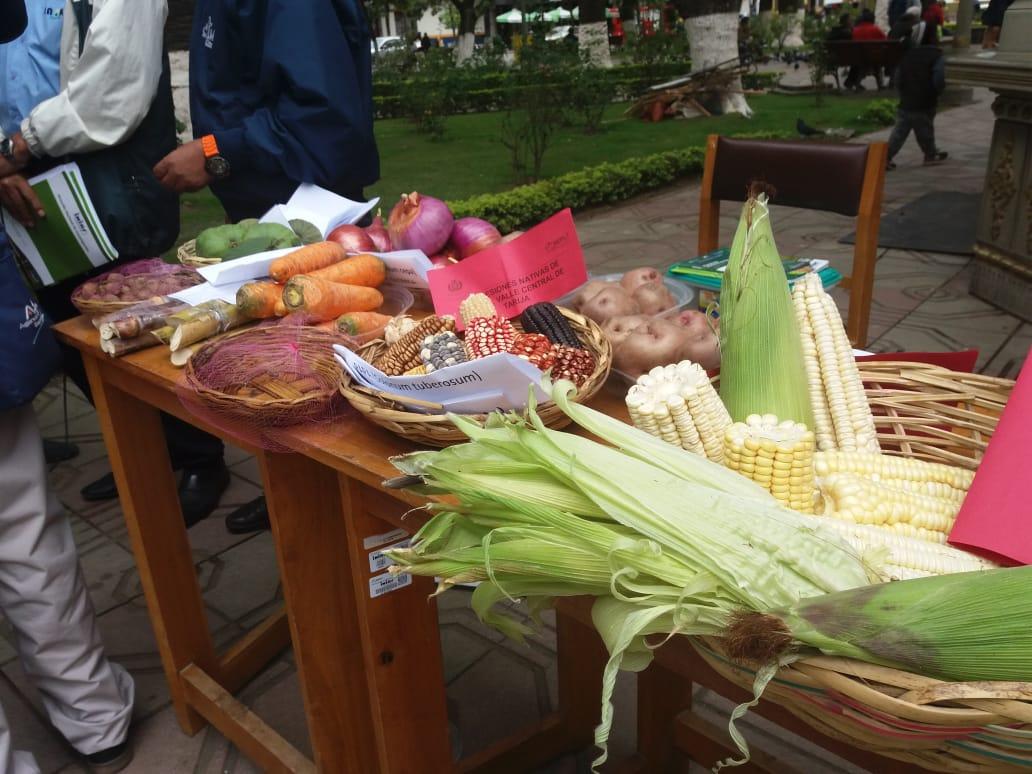 El Iniaf presenta más de 10 variedades mejoradas de hortalizas por las efemérides de Tarija