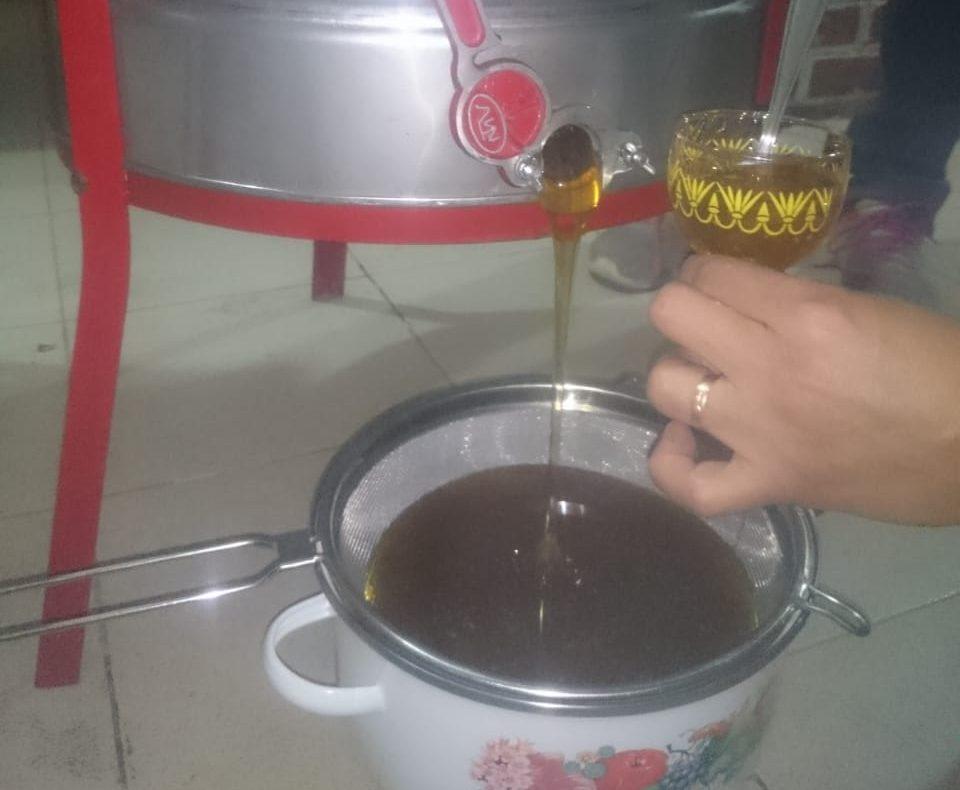 Agroquímicos, contrabando y competencia desleal, problemas a los que se afrontan los productores de miel en Tarija