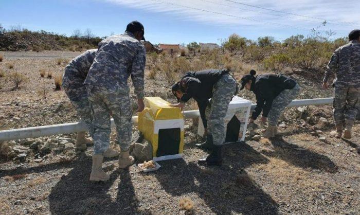 Policía instala 40 casas para perros en situación de abandono de la zona alta de Tarija