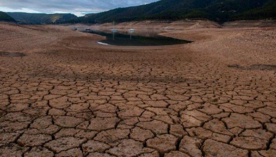 La ONU advirtió que cambiar la dieta alimentaria es clave para frenar el calentamiento global