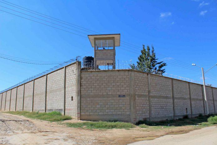 Hombre cumplió sentencia de 5 años por atropellar a una mujer por accidente en Tarija