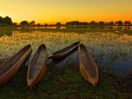 El delta del Okavango en Botsuana habría sido similar a los humedales que rodeaban al ancestral lago Makgadikgadi