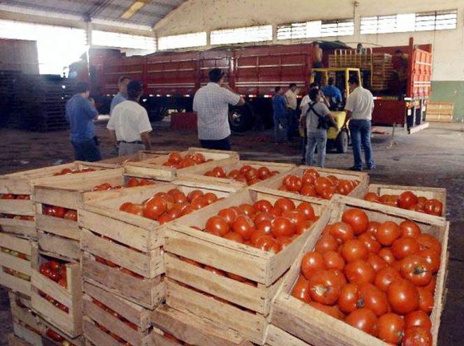 Tarija: Armada decomisa un camión con tomate de contrabando en Bermejo