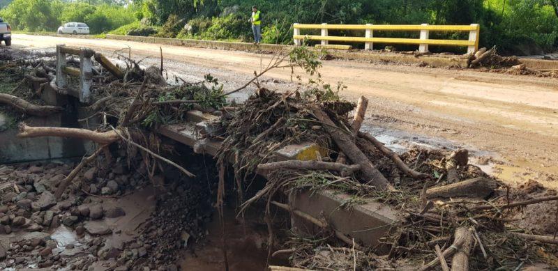 Transporte libre pide a la ABC limpieza urgente de la carretera Tarija - Bermejo