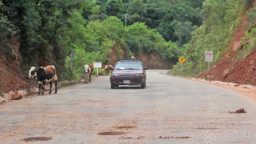 Asambleísta denuncia falta de control en la circulación de vehículos al Chaco