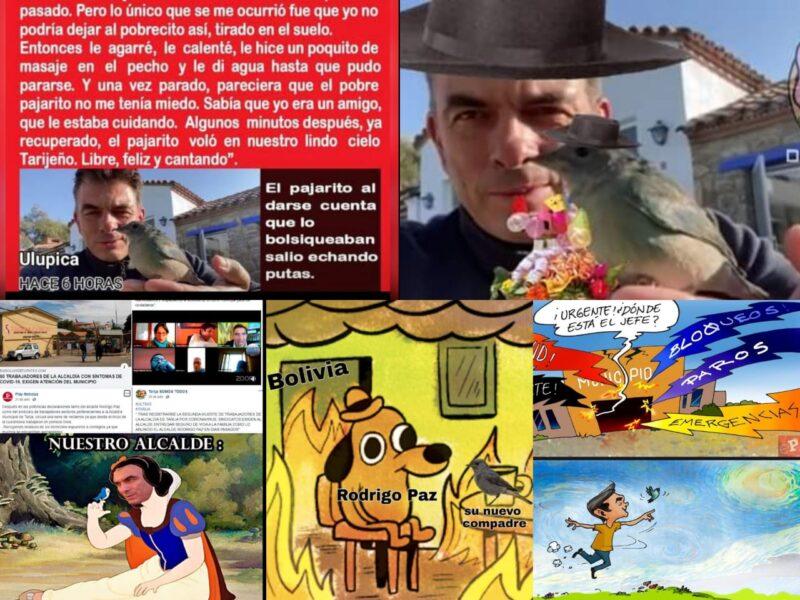 Humor tarijeño, los mejores 'memes' de Rodrigo Paz y el rescate a un pajarito
