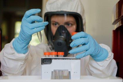 La vacuna rusa contra el coronavirus no podrá suministrarse a dos grupos demográficos clave