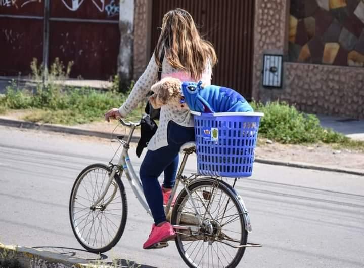 Mujeres ciclistas urbanas el nuevo blanco del machismo y el acoso callejero en Tarija