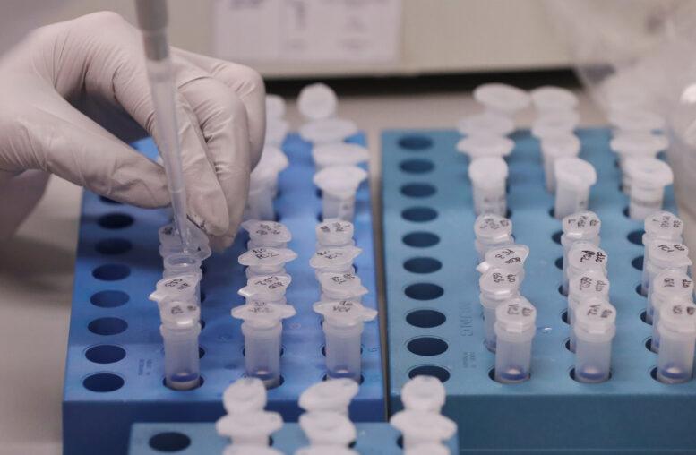 Dos compañías afirman que sus vacunas son 95 por ciento eficaces: ¿qué significa eso?