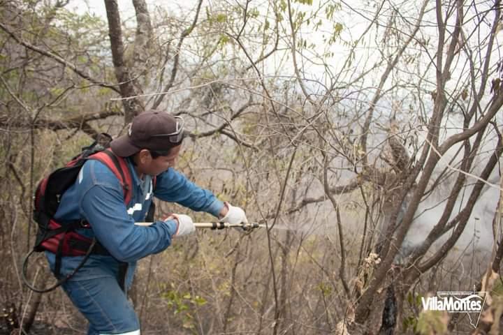 Gobernación continúa apoyando tareas  para controlar el incendio en Villa Montes
