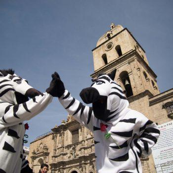 Las Cebras de La Paz cumplen 19 años educando a la ciudadanía de manera interactiva