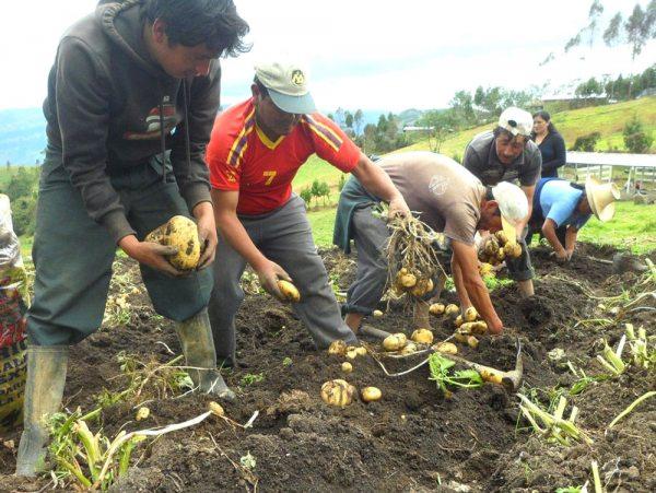 Tarija: Productores de la comunidad de San Andrés realizan invitación a la inauguración del primer mercado rural