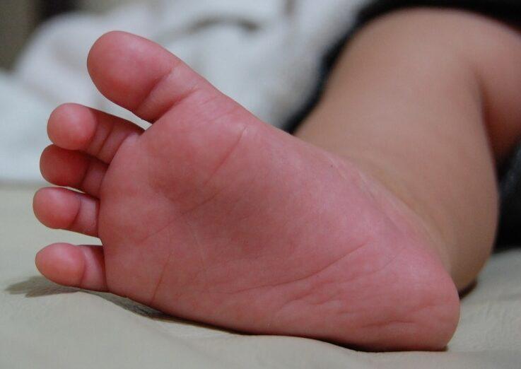 Trasladan al hospital de Tarija a un niño de un año que fue mordido por una víbora