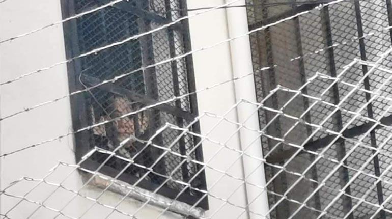 Disponen sanción para Añez con tres días sin visita en la cárcel